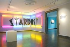 """Stardust"" (from ""€-VSN""), ""Stardust"", 2015, wood, fluorescent light tubes, foil and paint,  600x110 cm (© Søren Hüttel)"